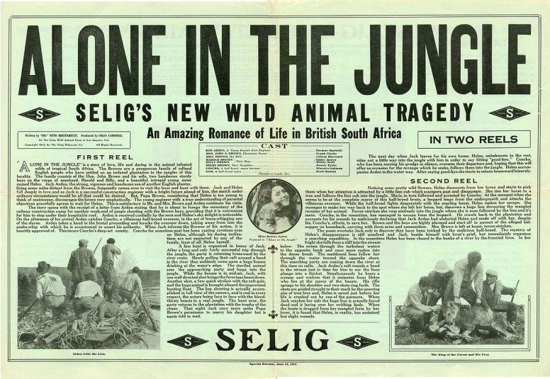 548-Alone in the Jungle